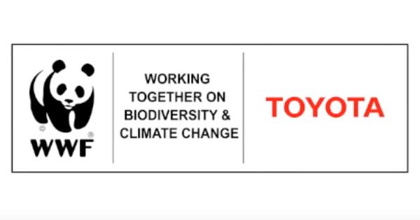 """Toyota ve WWF """"Sıfır Karbon"""" İçin İşbirliği Yapacak"""