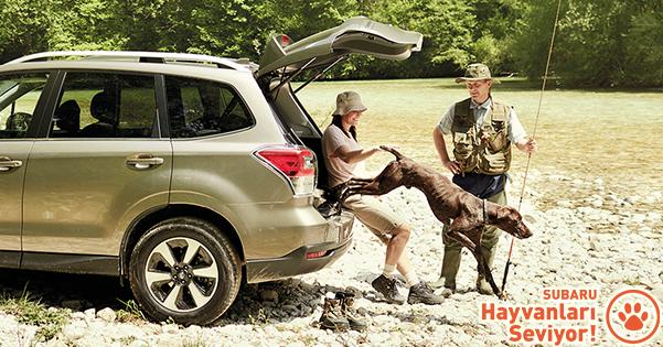 Subaru'dan Köpeklere Özel Kit Kazanma Şansı