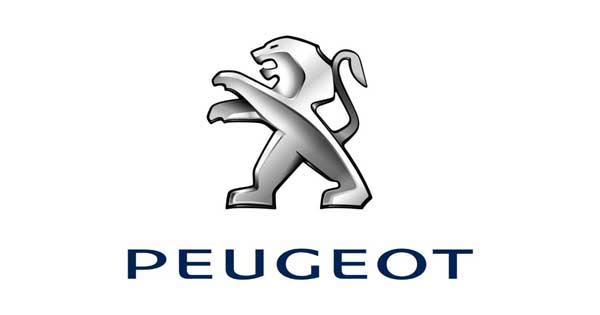 Peugeot Otomotiv Pazarlama A.Ş. Genel Müdürü Ötv-Kdv İndirimi ile İlgili Değerlendirmesi